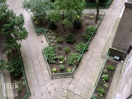 Modernizacja zieleni osiedlowej - widok z góry.