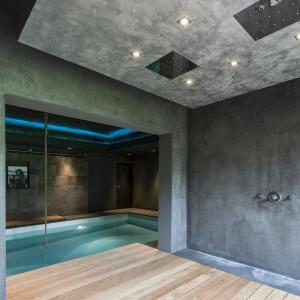 Pomieszczenie mieszczące basen kąpielowy wykończono w nowoczesnym, industrialnym stylu. Fot. Alphenberg