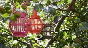 Gdy dni są coraz krótsze, a pogoda wciąż zachęca do przebywania w ogrodzie warto pomyśleć o oświetleniu ogrodu. Przydadzą się lampiony, świetlne girlandy, lampy naftowe czy biokominki. Dzięki nim efektownie oświetlimy przestrzeń wokół domu