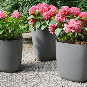 jednolity kolor oraz obłe kształty dobrze komponują się z różowymi kwiatami.Na zdjęciu doniczki Tokyo. Fot. Eternit.