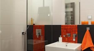 Mała łazienka to nie lada wyzwanie. Chcemy żeby była wygodna, elegancka i praktyczna na co dzień. Zobaczcie jak to zrobić.