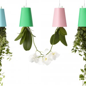 Donice dostępne są w wielu kolorach, dzięki czemu sprawdzą się doskonale w każdym wnętrzu. Fot. Boskke.