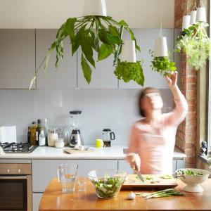 W doniczkach Sky Planter możemy umieścić świeże, aromatyczne zioła, które przydadzą się w każdej kuchni. Fot. Boskke.