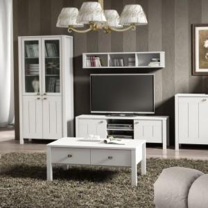 Program Village to meble dedykowane do salonu. Fronty tego modelu wykonane są z białego MDF-u. Dostępny jest w jasnej kolorystyce i doskonale dopasowuje się zarówno do wnętrz klasycznych, jak i nowoczesnych. Fot. MM Bravo.