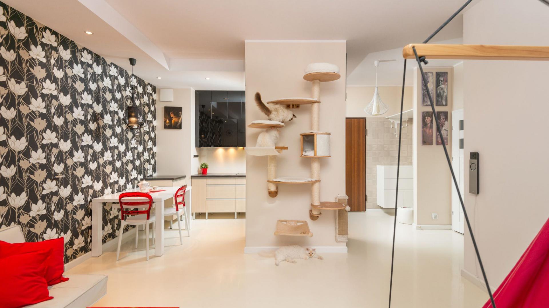 Na ścianie oddzielającej kuchnię od salonu zamontowano domek dla kota. Zwierzaki mogą skakać i bawić się do woli w tej przestrzeni, stworzonej specjalnie dla nich. Fot. Decoroom.