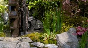 Przypominamy nagrodzone projekty z Chelsea Flower Show, które mogą stać się inspiracją przy projektowaniu ogrodu. Może wśród nich znajdziecie coś dla siebie.