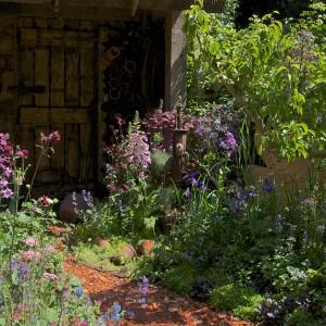 Ogród nawiązujący do tradycyjnych, wiejskich przydomowych ogródków. Nature Redesigned. Fot. RHS Chelsea Flower Show.
