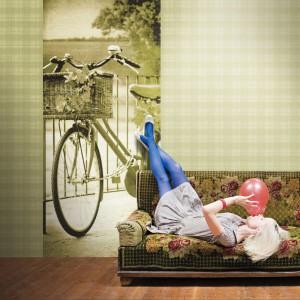 Fototapeta z motywem roweru w kolorze stonowanej zieleni. Fot. Altagamma.