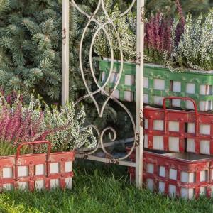 Kolorowe osłonki do kwiatów doskonale sprawdzą się w połączeniu z jesiennymi wrzosami. Fot. Sodo.