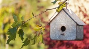 Coraz zimniejsze dni, pierwsze mrozy i opady śniegu to znak, że powinniśmy zadbać o domki i karmniki dla ptaków. Przedstawiamy ciekawe propozycje, które mogą stać się ciekawą dekoracją naszego ogrodu czy balkonu.