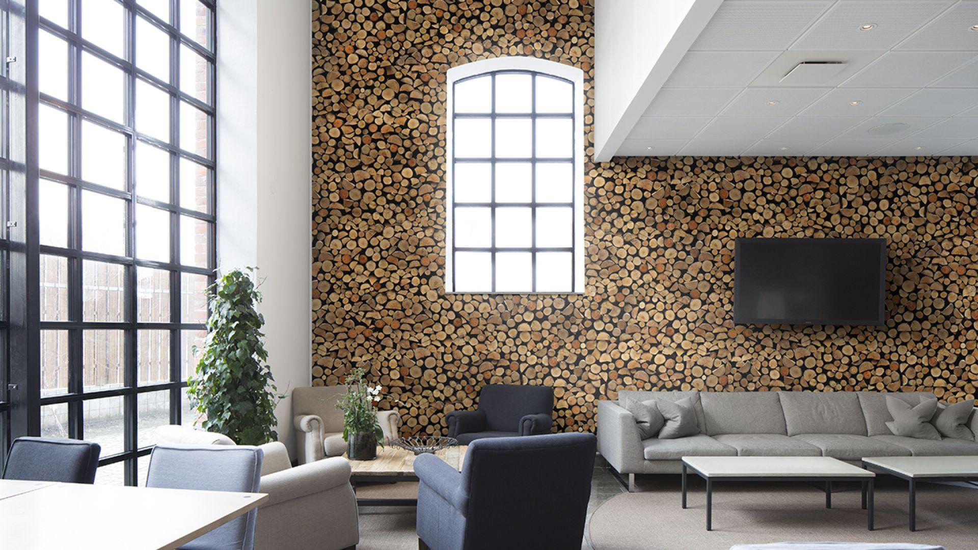 ciany w salonie fototapeta jak kamie drewno czy ceg a. Black Bedroom Furniture Sets. Home Design Ideas