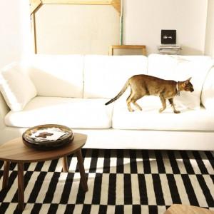 Sofa Stockholm z katalogu IKEA chociaż jest w kolorze ecru, to łatwo utrzymać ją w czystości. Gdy się zabrudzi jej wierzchnie pokrycie można zdjąć i uprać w pralce. Cena: 2.999 zł. Fot. IKEA.