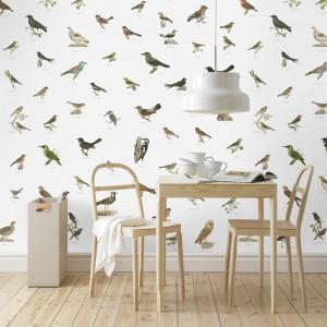 Biała tapeta w kolorowe ptaszki uatrakcyjni ściany w minimalistycznej jadalni. Znakomicie sprawdzi się we wnętrzu w stylu skandynawskim. Fot. 5qm.de Tapeten.