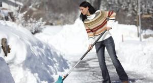 Zimą warto zadbać o odpowiednie narzędzia, które podczas intensywnych opadów śniegu ułatwią nam odśnieżanie. Dzięki specjalnym odgarniaczom czy odśnieżarkom porządkowanie chodników i podjazdów stanie się łatwiejsze.