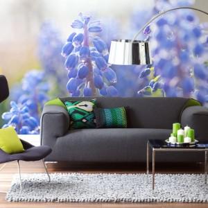 Fototapeta z fioletowymi kwiatami w skali makro z oferty marki Pixers.