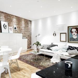 Ścianę w salonie zdobi efektowny obraz. Rolę dekoracji pełnią także liczne poduszki w monochromatycznych wzorach, które korespondują z kolorem ściany w kuchni. Fot. Stadshem.se.