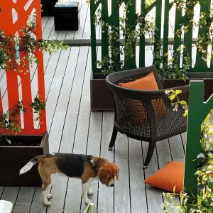 Separetor to nowoczesna, dekoracyjna forma, którą mogą ozdobić zielone pnącza. Projekt: Fabio Bortolani. Fot. Teracrea.