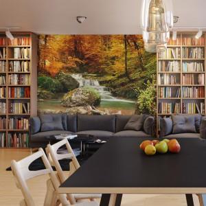Fototapeta optycznie powiększająca przestrzeń z motywem barwnej jesieni. Fot. Pixers.