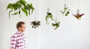 Kwiaty i rośliny wprowadzają do wnętrza spokój i harmonię, a poza tym oczywiście korzystnie wpływają również na nasze samopoczucie. Umieszczone w odpowiednich doniczkach mogą stworzyć ciekawą kompozycję.
