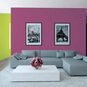 Bardzo modnym zabiegiem dekoracyjnym jest wykorzystanie podczas malowania dwóch, nawet kontrastujących ze sobą, kolorów farb. Fot. Jedynka Ogród Barw.