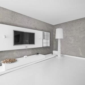 Efekt dekoracyjny marki Jeger to dyspersyjna farba strukturalna, która pozwoli uzyskać na ścianach i sufitach efekt betonu. Fot. Jeger.