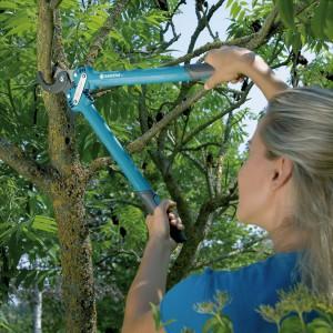 Dokonując cięcia formującego, kształtującego koronę drzewa,  należy zadbać o zachowanie dominacji pnia głównego i równomierny układ gałęzi. Dzięki temu zapewniamy roślinie trwałość i wytrzymałość na rozłamanie. Cięcia formujące najlepiej jest wykonywać w przypadku młodych drzew – w pierwszych latach ich rozwoju. Fot. Gardena.