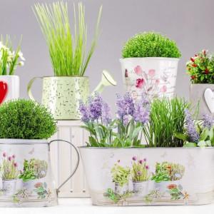 Kwiaty doniczkowe na oknie to znakomity pomysł na odświeżenie wnętrza wiosną. Kiedy dodatkowo posadzone są w takich uroczych donicach, salon czy balkon z pewnością zyskają świeży wygląd. Doniczki do kupienia w sklepie Home&You, cena podłużnej z uchwytami: 35 zł. Fot. Home&You.