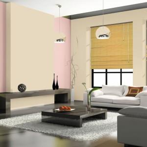 Farba akrylowa do ścian i sufitów piaskowa alejka marki Jedynka pozwoli uzyskać jaśniejszy akcent na ścianie. Fot. Jedynka.