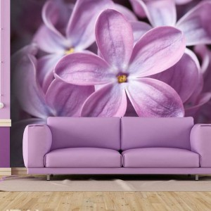 Przeskalowana kwiaty fioletowego bzu na fototapecie pozwolą stworzyć niezwykle romantyczne i kobiecie wnętrze. Fot. Demural.
