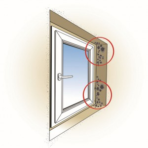 Brak prawidłowego zabezpieczenia połączenia okna z murem powoduje zawilgocenie i rozwój zagrzybienia.
