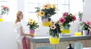 Wiosną chętnie odmieniamy nasze wnętrza. Poza kolorowymi dodatkami warto wprowadzić donajbliższej przestrzeniżywe rośliny, które w odpowiedniej oprawie mogą stać się ciekawą dekoracją.