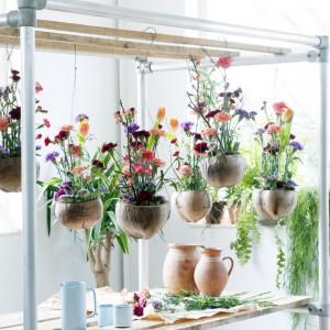 Gożdziki umieszczone w wieszanych doniczkach możemy zawiesić w dowolnym miejscu. Fot. Flower Council.