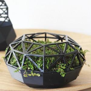 Geometryczna donica C w ciekawy sposób pozwala wyeksponować każdą roślinę. Fot. My Baze.