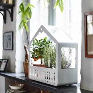 Dekoracyjną miniszklarnię można zawiesić na ścianie lub postawić na płaskiej powierzchni. Fot. IKEA.