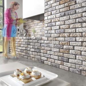 Kolekcja Loft Brick poprzez swoją surową i minimalistyczna fakturę nawiązuje do tradycji architektury europejskiej. Wyróżnia się luźną spoiną kamienia. Cena: ok. 56 zł (opakowanie). Fot. Stone Master.