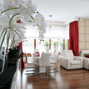 Ścianę w salonie udekorowano tapicerowaną ekoskórą w ciepłym beżowym kolorze. Projekt: Katarzyna Mikulska-Sękalska. Fot. Bartosz Jarosz.