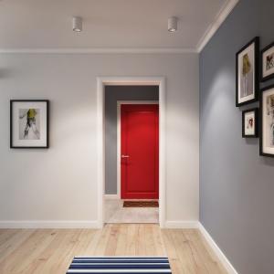 Nowoczesnym pomysłem na ożywienie chłodnego pomieszczenia jest na przykład wstawienie kolorowych drzwi. Nadaje to właśnie w tym wnętrzu skandynawski charakter, na którym zależało właścicielom. Projekt i wizualizacje: Alexei Ivanov i Pavel Gerasimov / Studio projektowe Geometrium.