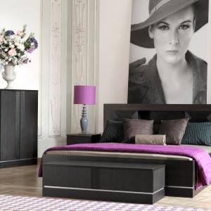 W serii Classic to intrygujące ciemne barwy i ozdobne, dekoracyjne elementy składają się na wyjątkowość tej kolekcji. Fot. Vox.