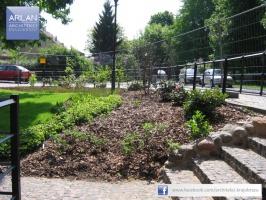ARLAN Architekci Krajobrazu - realizacja: Hotel 1231, Toruń - kompozycja roślin wrzosowatych wygląda pięknie przez niemal cały rok