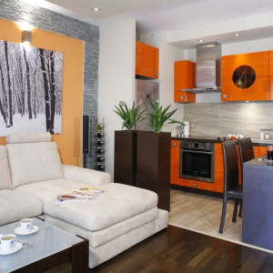 W malutkim apartamencie salon został połączony nie tylko z kuchnią i jadalnią, ale i sypialnią. Organizuje go narożna sofa w jasnym kolorze. Projekt: Jolanta Kwilman. Fot. Bartosz Jarosz.