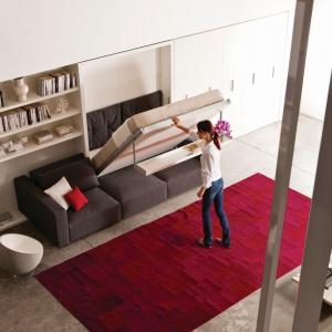 System Swing to meblościanka dedykowana małym wnętrzom. Za dnia jest eleganckim systemem półek i sofą, zaś wieczorami przeistacza się w wygodną sypialnię dla jednej lub dwóch osób. Wystarczy tylko opuścić ukrytą w zabudowie leżankę. Fot. Clei.