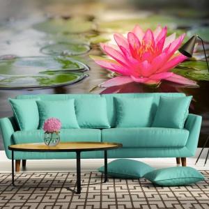 Fototapeta z motywem przeskalowanej lilii wodnej. Fot. Livingstyle.pl.