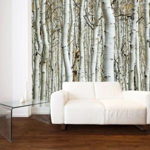 Fototapeta Birch z tak modnymi w tym sezonie brzózkami. Fot. Art of wall.