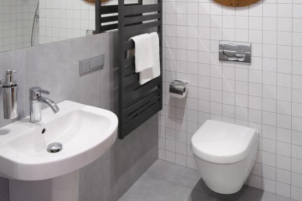 Mała łazienka – projekt z prysznicem we wnęce