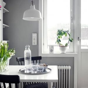 Ściana pomalowana szarą farbą tonuje dominującą we wnętrzu biel i nadaje mieszkaniu delikatniejszy charakter, przełamując jego sterylność. Fot. Krister Engström.