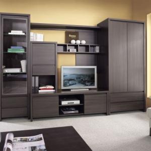 Meblościanka Kaspian to idealny sposób na zagospodarowanie  miejsca w niedużym salonie. Fot. Black Red White.