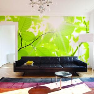 Fototapeta z zielonymi liśćmi w skali makro z oferty marki Dekornik.pl.