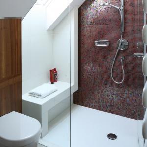 Prysznic ma ścianę wykończoną mozaiką w kolorze bordo. Fot. Bartosz Jarosz.