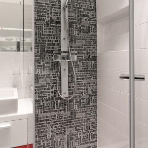 Kabinę wyposażono w panel prysznicowo-masażowy. Fot. Bartosz Jarosz.