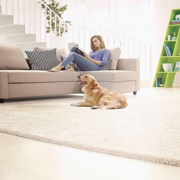 Czysty dom. Idealne odkurzacze dla właścieli psów i kotów